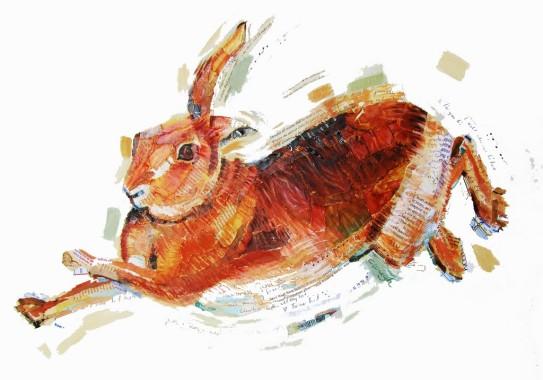 Hare Beware II